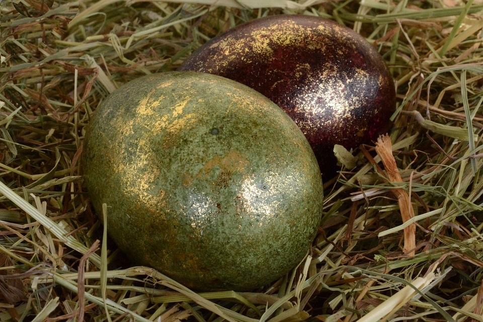 eb_eggs1.jpg